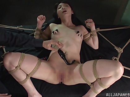 Tied up model Suzuya Ichigo enjoys procurement pleasured far toys